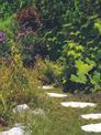 Foarfeca iarba si gard viu fara fir GE-CG 7,2 Li Einsatzbild 1