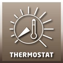 Panel Oil Heater FH 800 Detailbild 1
