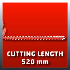 Cordless Hedge Trimmer RG-CH 18 Li Detailbild 1