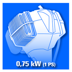 Petrol Lawn Trimmer BG-PT 2538 AS Detailbild 1