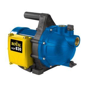 Productimage Garden Pump RGP 830